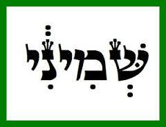 Sheminí